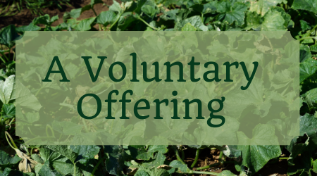 A Voluntary Offering