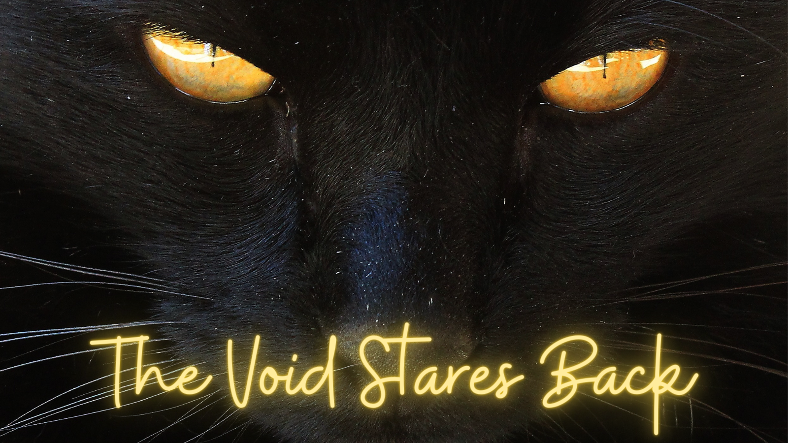 The Void Stares Back